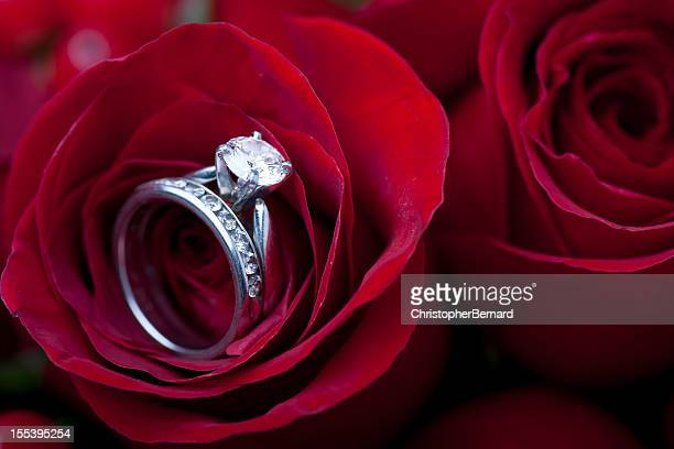 engagement ring in red rose - platinum rings stock pictures, royalty-free photos & images