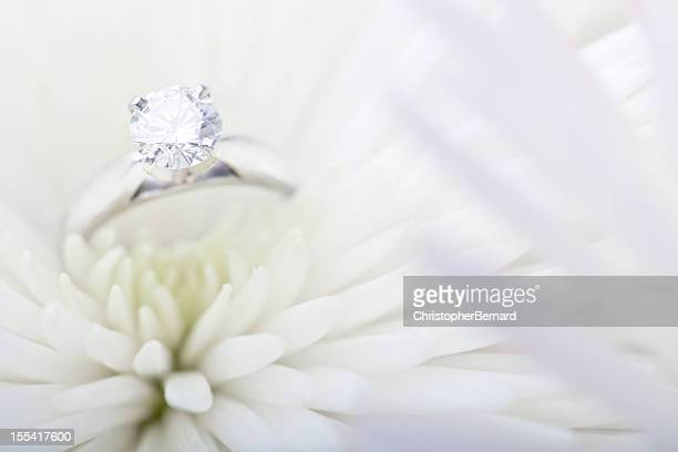 Engagement ring in white daisy