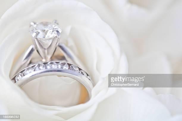 婚約指輪、ホワイトローズ