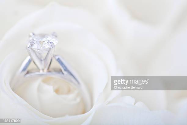 Engagement ring in white rose