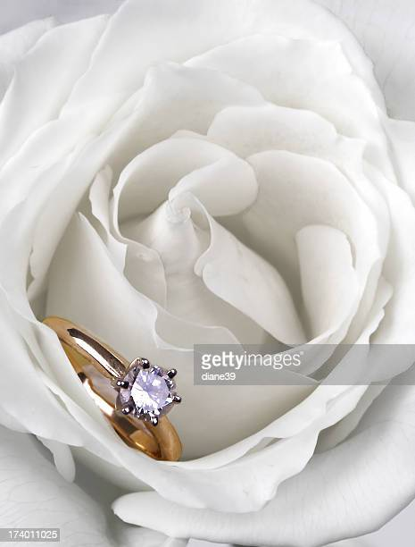 Engagement-rose