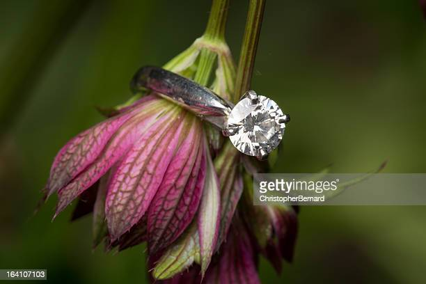 Engagment ring on purple flowers
