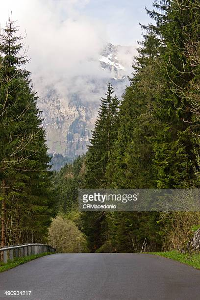 engelberg - crmacedonio stock pictures, royalty-free photos & images