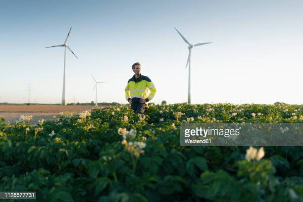 engineer standing in a field at a wind farm - milieu stockfoto's en -beelden