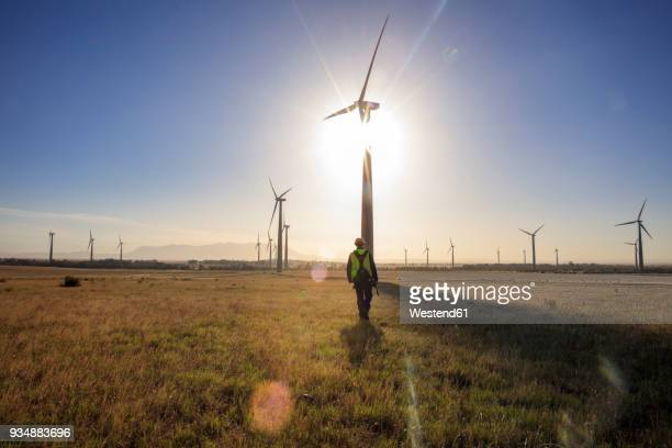 engineer walking on a wind farm at sunset - energieindustrie stock-fotos und bilder