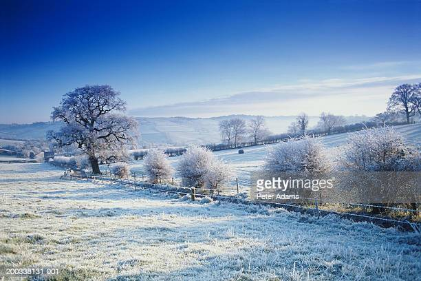england, bath, snow covered landscape, winter - south west england stock pictures, royalty-free photos & images