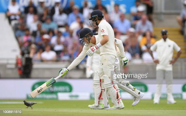 England batsman Keaton Jennings and Joe Root chase a pigeon off the pitch during day one of the First Specsavers Test Match between England and India...