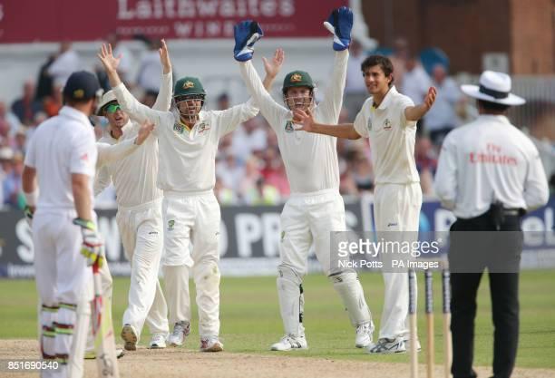 England batsman Stuart Broad is caught by Australia captain Michael Clarke who shouts at Umpire Aleem Dar with teammates Ed Cowan, Brad Haddin and...