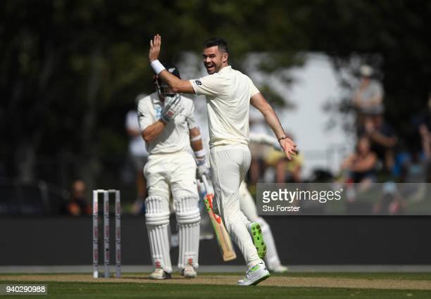 England bowler James Aanderson takes the prized wicket of New Zealand captain Kane Williamson during day two of the Second Test Match between the New...