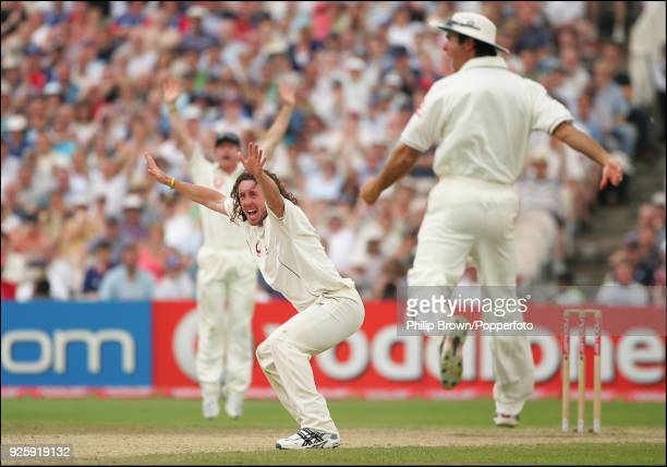 England bowler Ryan Sidebottom appeals unsuccessfully for a wicket supported by teammates Paul Collingwood and Michael Vaughan during the 3rd Test...