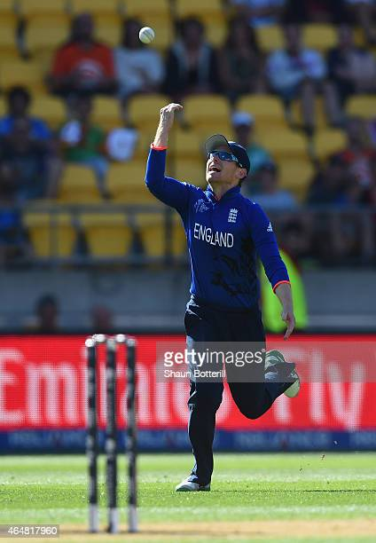 England captain Eoin Morgan celebrates after catching TM Dilshan of Sri Lanka during the 2015 ICC Cricket World Cup match between England and Sri...