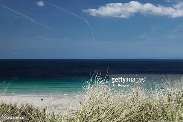 England, Cornwall, Sennen Cove, grassy dunes overlooking ocean