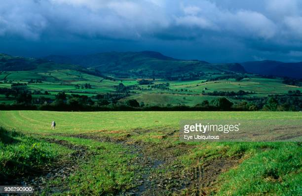 England Cumbria Lake District View across green field from Blencathra centre towards Saddle Beck and Lowrigg