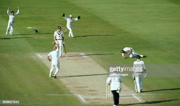 England fielders John Emburey and keeper Paul Downton celebrate as Phil Edmonds swoops to catch Australia batsman Craig McDermott off the bowling of...