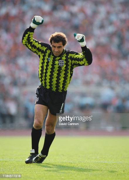 England goalkeeper Peter Shilton celebrates England's goal during the 1-3 defeat to Holland during the 1988 UEFA European Championships Finals match...