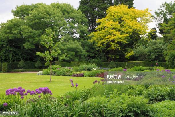 england, london, regent's park, - lawn stock pictures, royalty-free photos & images