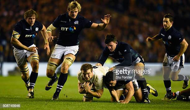 England player Joe Launchbury beats the Scotland players to a loose ball during the RBS Six Nations match between Scotland and England at Murrayfield...