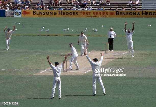 England players celebrate as Ian Healy of Australia is caught for 79 by England wicketkeeper Steve Rhodes off the bowling of Devon Malcolm during the...