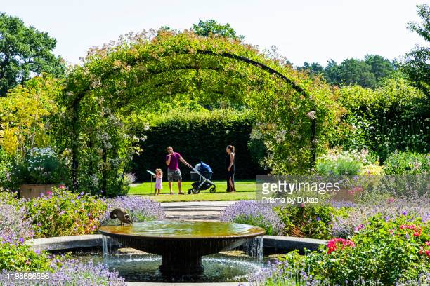 England, Surrey, Guildford, Wisley, The Royal Horticultural Society Garden, Flowers in Bloom, 30064284.