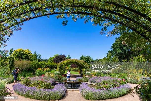 England, Surrey, Guildford, Wisley, The Royal Horticultural Society Garden, Flowers in Bloom, 30064281.