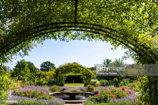 England, Surrey, Guildford, Wisley, The Royal Horticultural Society Garden, Flowers in Bloom, 30064286.