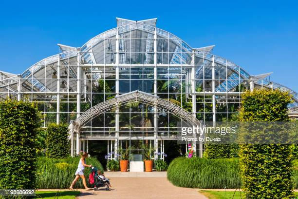 England, Surrey, Guildford, Wisley, The Royal Horticultural Society Garden, The Glasshouse, 30064312.