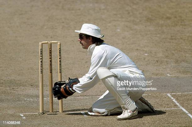 England wicketkeeper Jack Russell in action during the 6th Test match against the West Indies at the Recreation Ground in St John's, Antigua, 24th...