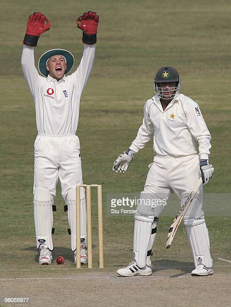 England wicketkeeper Matt Prior appeals succesfully for the wicket of Bazid Khan off the bowling of Ashley Giles during the third and final day of...