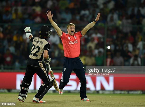 England's David Willeyappeals for a leg before wicketdecision against an unseen New Zealand's Martin Guptill as New Zealand's captain Kane Williamson...