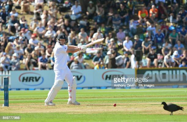 England's Jonathan Trott hits a shot past a duck on the outfield during day one of the Second Test match at Hawkins Basin Reserve Wellington New...