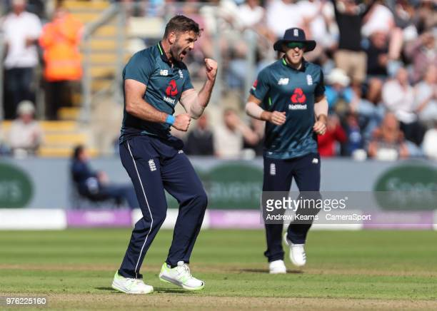 England's Liam Plunkett celebrates after taking the wicket of Australia's Marcus Stoinis during the Royal London OneDay Series 2nd ODI between...