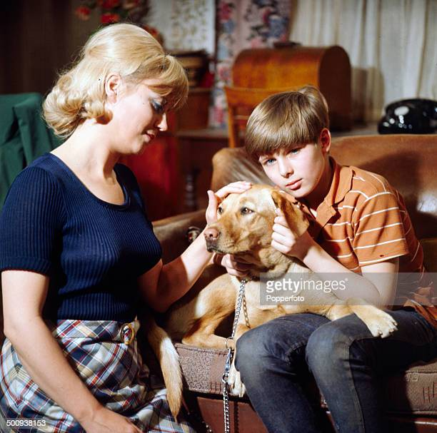 English actor John MoulderBrown pictured with actress Marjie Lawrence and a Labrador dog on the set of the television series 'Weavers Green' in 1966