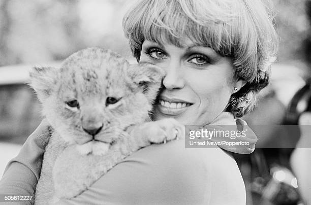 English actress and model Joanna Lumley posed with a lion cub at a press reception to launch the television series The New Avengers at Pinewood...