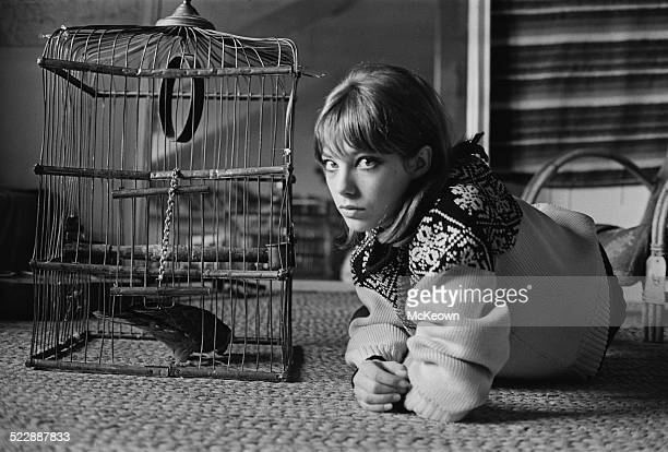 English actress and singer Jane Birkin 1964