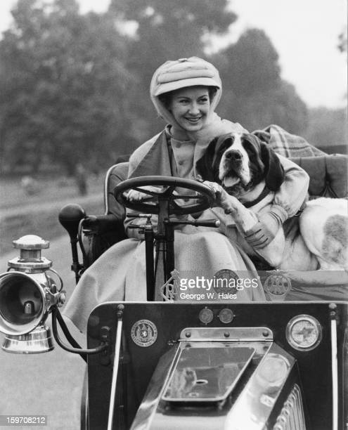 English actress Dinah Sheridan poses on a 1904 Darracq with Susie the St Bernard during the filming of 'Genevieve' in Hyde Park London 23rd September...