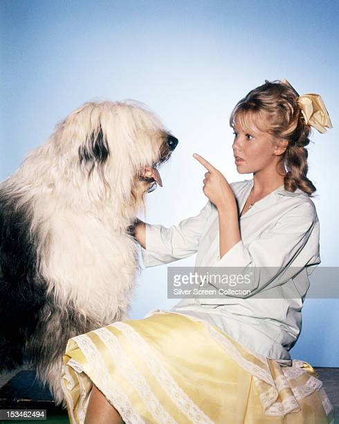 English actress Hayley Mills points at an old english sheepdog in a publicity still for 'Summer Magic' directed by James Neilson 1963