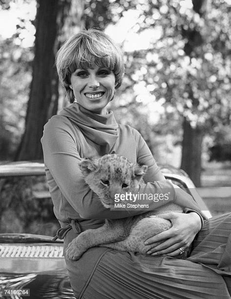 English actress Joanna Lumley star of TV's 'The New Avengers' at Pinewood studios with sixweekold lion cub Sultan 12th October 1976