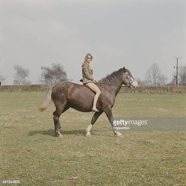 English actress Julie Christie who appears in the film 'Far From the Madding Crowd' pictured riding a horse in a field in 1967