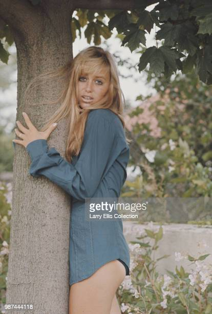 English actress Susan George posed wearing a blue blouse and holding the trunk of a tree in England in 1972