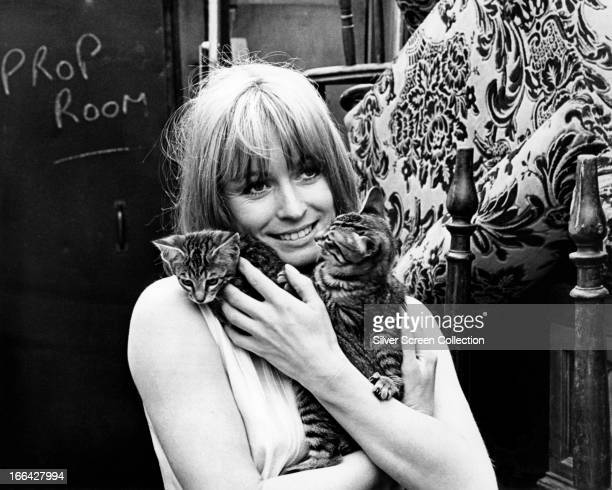 English actress Suzy Kendall holding a pair of kittens on the set of 'Up the Junction' directed by Peter Collinson 1968
