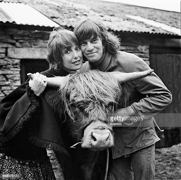 English actress Una Stubbs and her husband actor Nicky Henson with an 18monthold West Highland heifer named after Una UK 13th August 1971