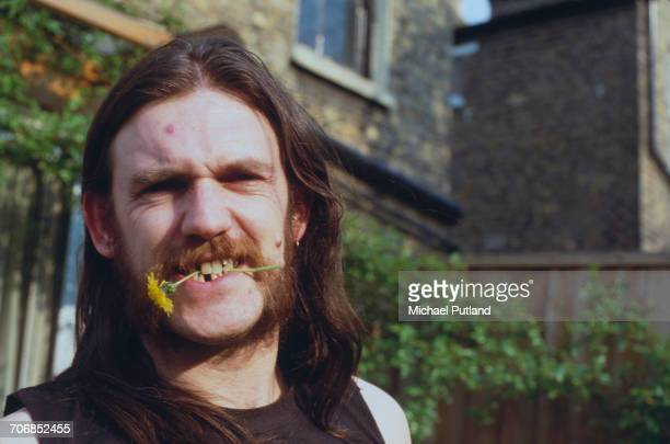 English bassist and singer Ian 'Lemmy' Kilmister of heavy rock group Motorhead posed with a dandelion flower in his mouth in London in 1982.