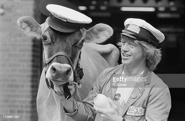English comedy actor Robin Askwith dressed in a milkman's uniform and holding the reins of a dairy cow 1st September 1984