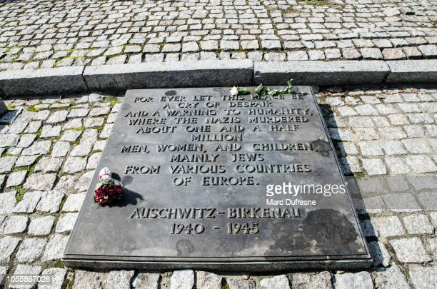 english commemorative plate at birkenau concentration camp in poland during summer day - auschwitz stock pictures, royalty-free photos & images