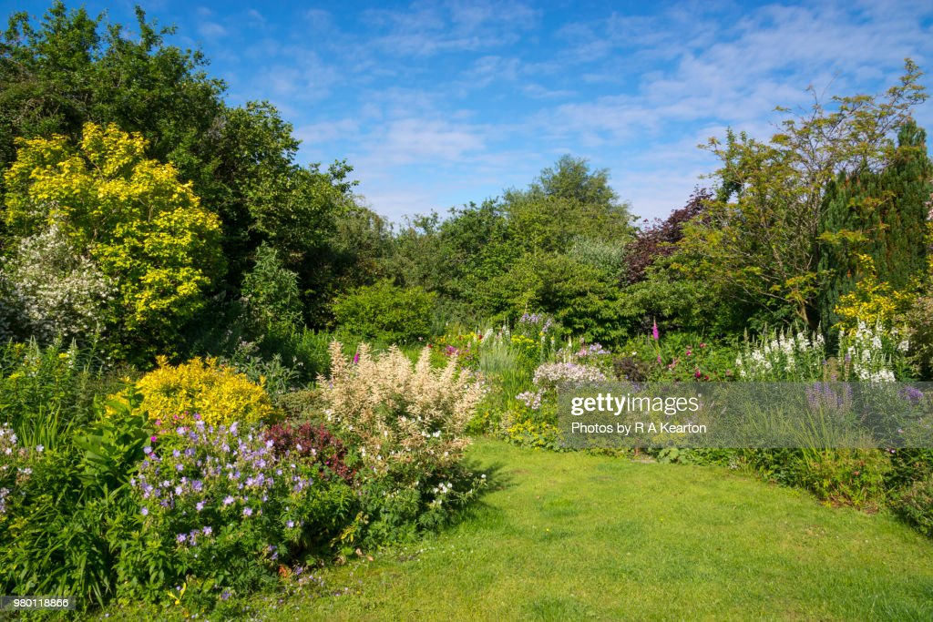 English cottage garden in June : Stock Photo
