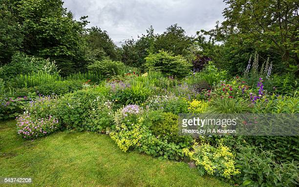 English cottage garden in late June