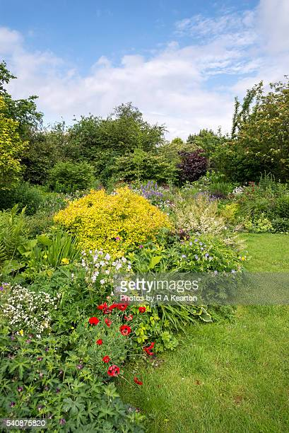 English country garden in June