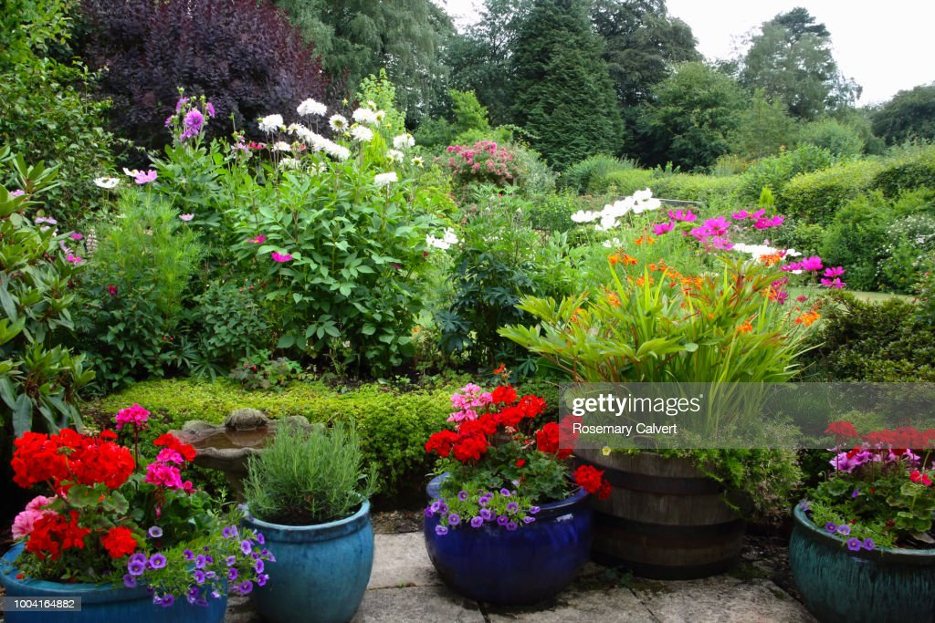 English Country garden on overcast summer's day. : Stock Photo
