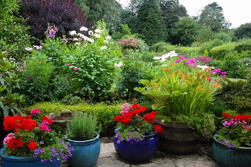 English Country garden on overcast summer's day. - gettyimageskorea