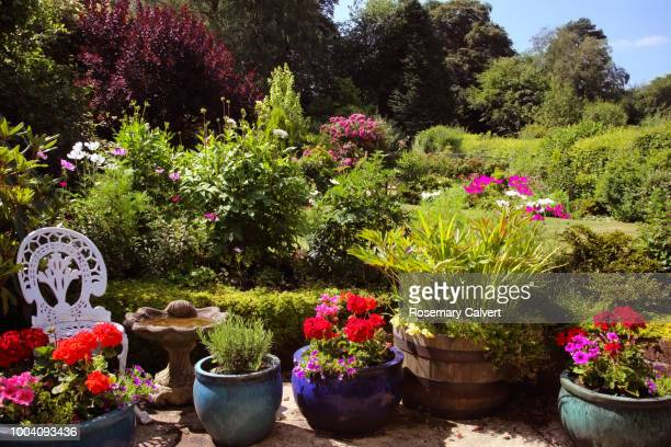 english country garden with patio pots in sunshine. - plant pot stock pictures, royalty-free photos & images